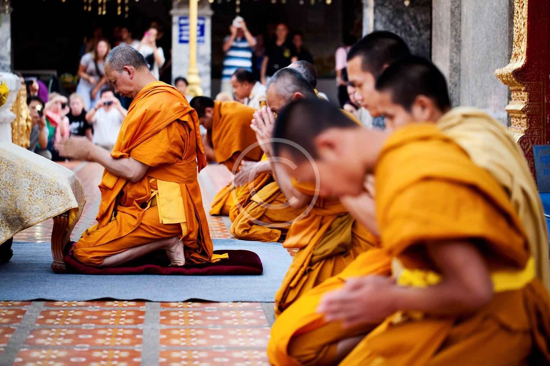 Meditation School